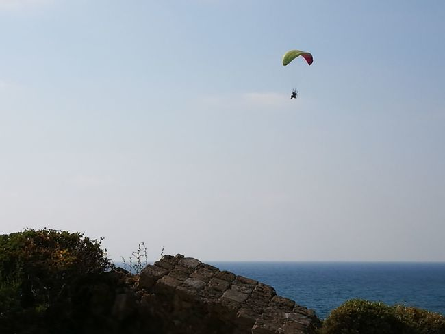 Beautiful moments Beach Sea Flying Sky Day Beauty In Nature Israel Clear Sky Tel Aviv Leicap9 Jaffa Israel TelAviv Water Huawei P9 Leica HuaweiP9plus Moments Adventure Nature Outdoors Extreme Sports Leisure Activity Horizon Over Water Scenics Kiteboarding Paragliding Tree