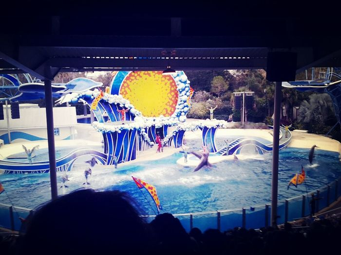 Yesterday Universal And Islands Of Adventure And Today Seaworld