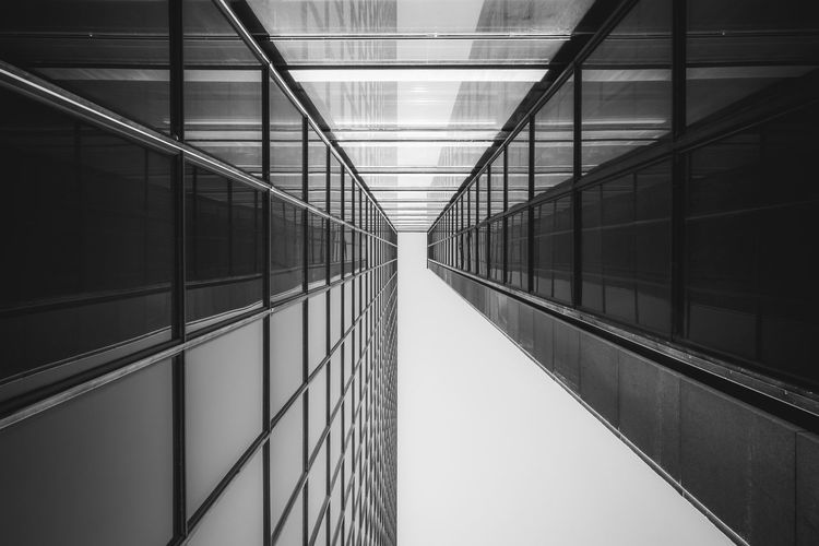 Architecture Built Structure Building No People Reflection Building Exterior Modern Glass - Material City Day Wall - Building Feature Office Building Exterior Outdoors Diminishing Perspective Nature Office Transparent Symmetry Pattern Glass Directly Below Ceiling The Architect - 2019 EyeEm Awards