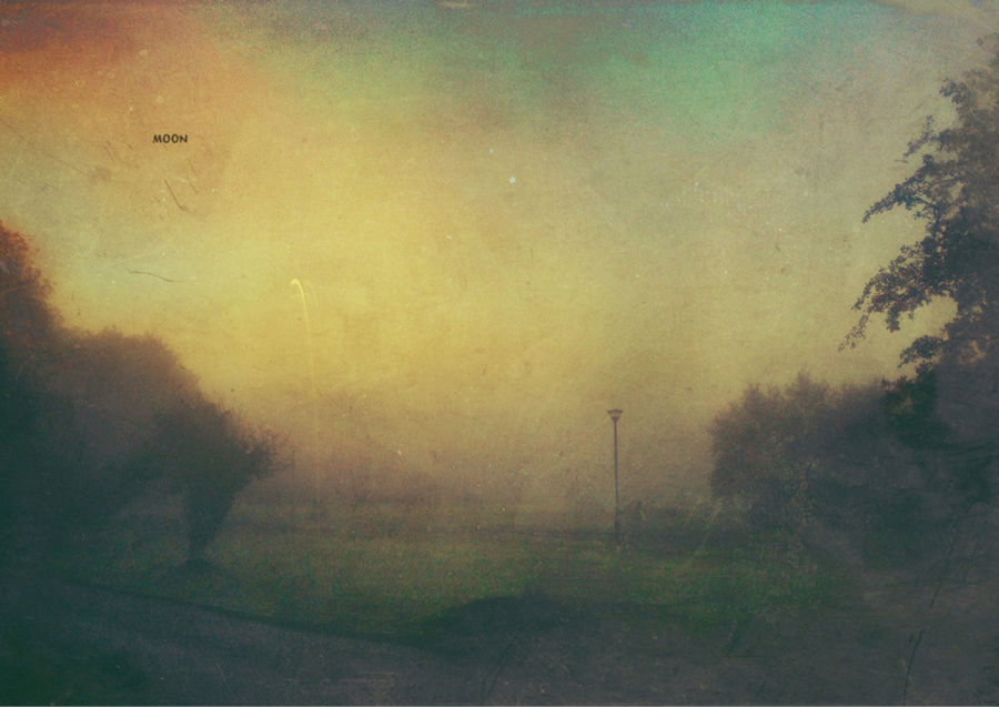 Misty Sunrise Landscape_Collection EyeEm Best Edits Light And Shadow What Lies Beyond... Foggy Morning Tadaa Community