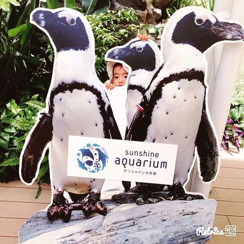 where is my daughter👧🏻? My Daughter Hide And Seek Aquarium