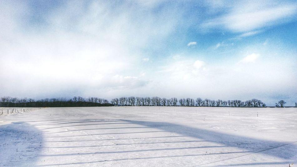 ☃️ Black_chica1801 Winter Winter Wonderland Snow ❄ Snow Trees Tree Hokkaido 北海道 Nature Photography 田舎暮らし Skyscraper Blue Sky Winter Landscape Naturephotography Snowphotography 雪 自然 冬 Winterlandscape Outdoors Tranquility Cloud - Sky Day Nature Beach Sky Scenics No People Landscape Beauty In Nature