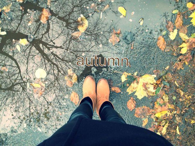 Taking Photos Style Autumn Legs #pretty #autumn #leaves #sun #big #pools #rain #girl #legs ???☔️☀️