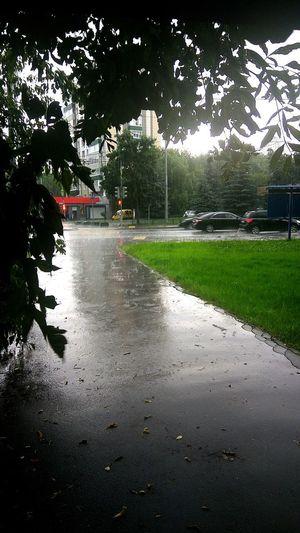 Москва, дождь, гроза Grass Wet Water Day Tree Outdoors Москва Russia Россия Cloud - Sky Rain City Street дом АрхитектураМосквы Moscow дома дерево Tree