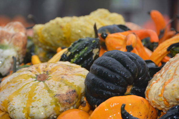 Close-Up Of Colorful Vegetable During Halloween