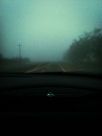 Looking Through The Fog