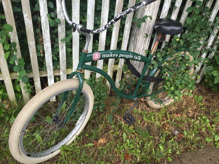 Bicyle Close-up Cyling Day Grass Green Color Growth Metallic Nature No People Outdoors Part Of Plant Stationary Tree Trunk Wheels