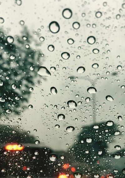 Rain drops Wet