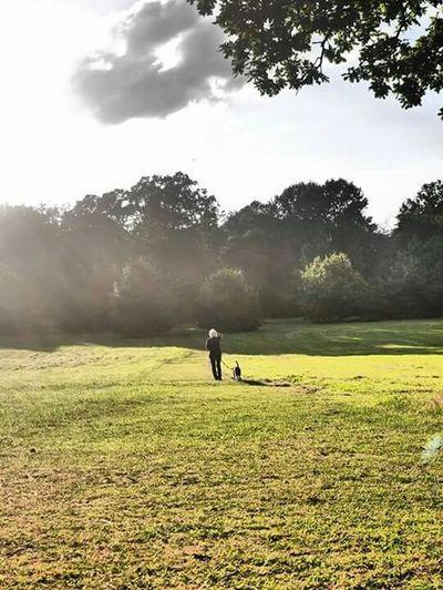 Sunny Day Walking The Dog Old Lady Happy Lumix DMC-GF1