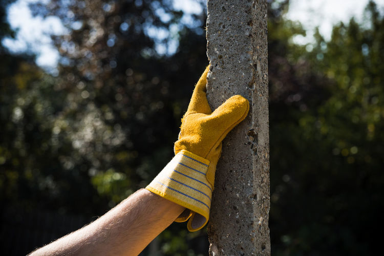 Yellow Glove On Pole Human Hand Human Body Part Hand Tree Plant Yellow Holding Pole Day Glove Human Limb Finger Gardening Growth Real People Outdoors Nature Close-up Body Part One Person Concrete Solid Arm Carpenter Worker