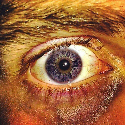 Shattered - Eye