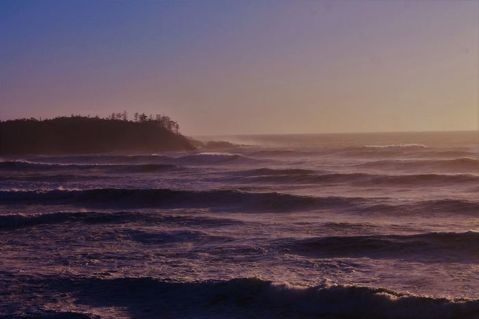 Pacific Northwest  Big Swell Island Pacific Ocean Stormwatching Treetops Waves, Ocean, Nature Wild Pacific Trail