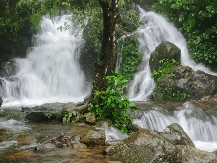 Waterfall Water Beauty In Nature Nature Motion Tree Long Exposure Scenics No People Outdoors Day Freshness Rock And Water Rocky Waterfall Rocky River Bliss Adventure Serenity Flowing Flowing Water Tranquility Splashing Freshness Forest Blurred Motion