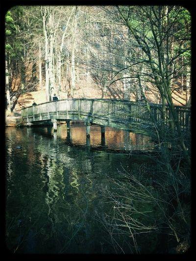 Brücke über dem Schmalsee und dem Lütauer See in Mölln