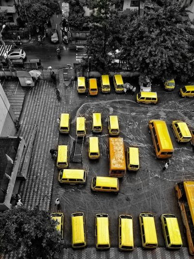 City Yellow