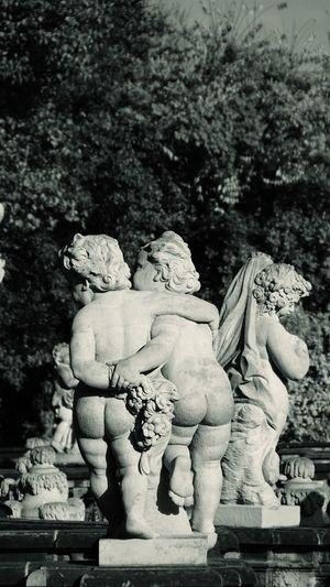Statue Fine Art Statue Outdoors Dresden zwinger