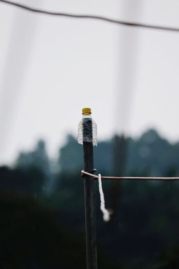 Close-up of bottle and rope on pole against sky