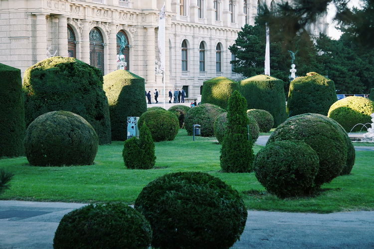 Topiary By Building At Park
