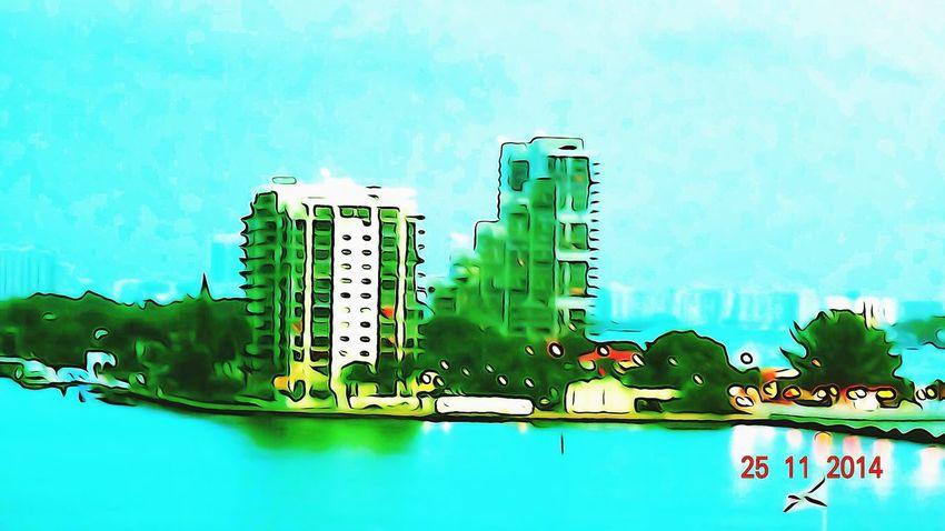 Miami Heaven 🇺🇸☀️FL Miami FL Usa 🇺🇸☀️ Check This Out Miami Portrait Of America Miami Now