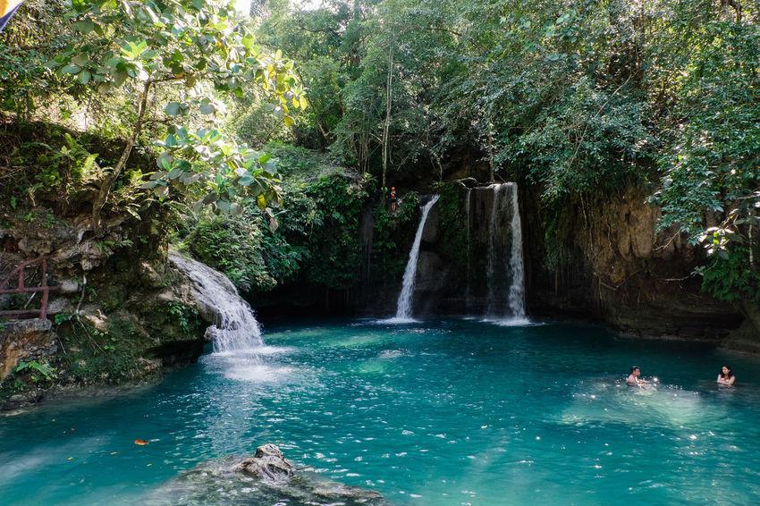 Kawasan Falls near Moalboal on Cebu Island. Kawasan Falls Philippines Waterfall Paradise Palmtree Nature Philippines Photos Moalboal Cebu