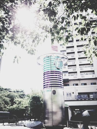 Osanpo Camera