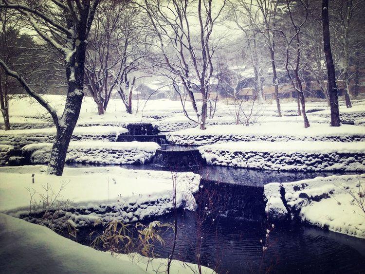 Travel Snow Hotel Winter Wonderland