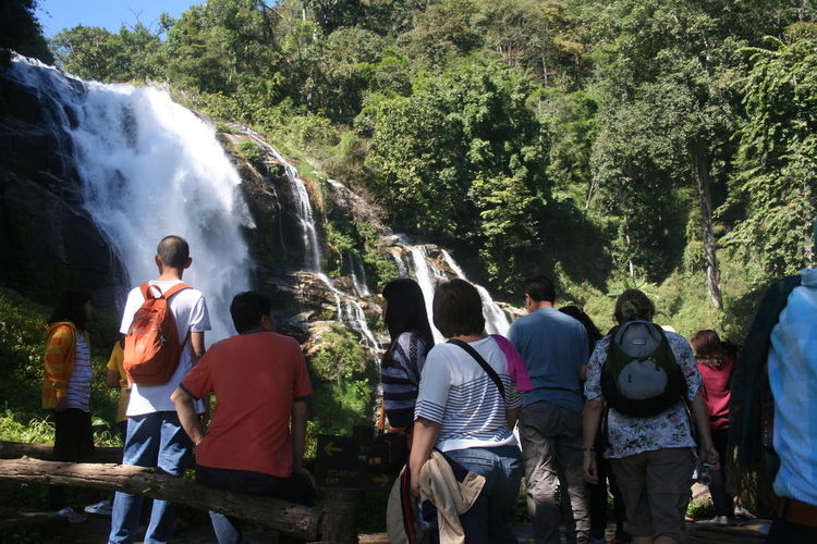 Rear view of crowd standing by waterfall in forest