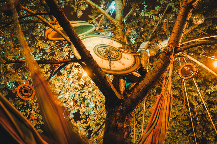 Night Lights Alice In Wonderland Surreal Time Time Is Running Out Time To Reflect Tree Watch Wonderland