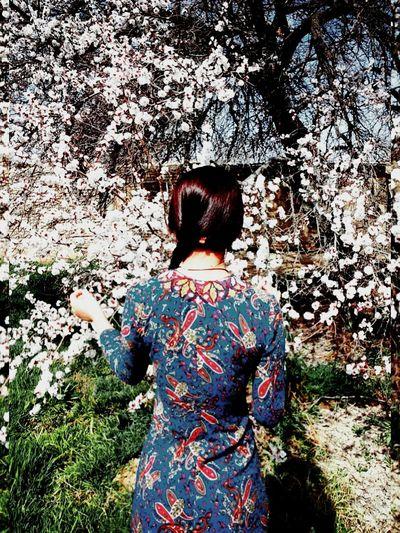 Springtime Blossoms First Eyeem Photo Springinturkmenistan