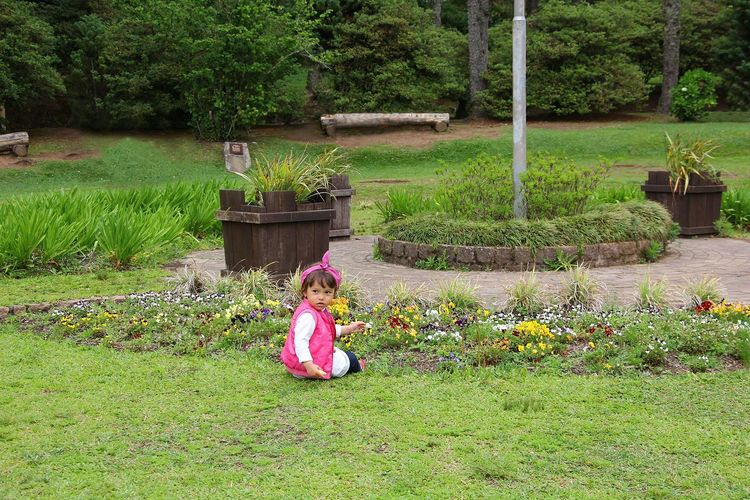 #baby #babygirl #Brazil #gramado #Kid #kids Smiling Happily Beauty In Nature Child Childhood Day Flower Full Length Girls Green Color Nature One Girl Only One Person Outdoors People Plant