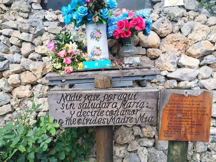 🙏🏼 Summer15 Chipinque Virgen María Flores