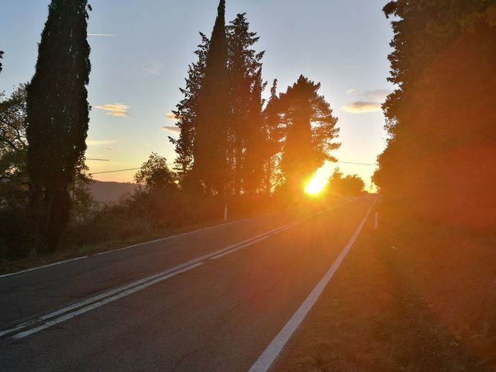 Sunset Sun Road Sunlight Sunbeam Highway Landscape Nature Tree No People Scenics Outdoors Summer Beauty In Nature Rural Scene The Way Forward Silhouette Sky Day Forest Toscany Tranquil Scene Nature Tuscany Italy