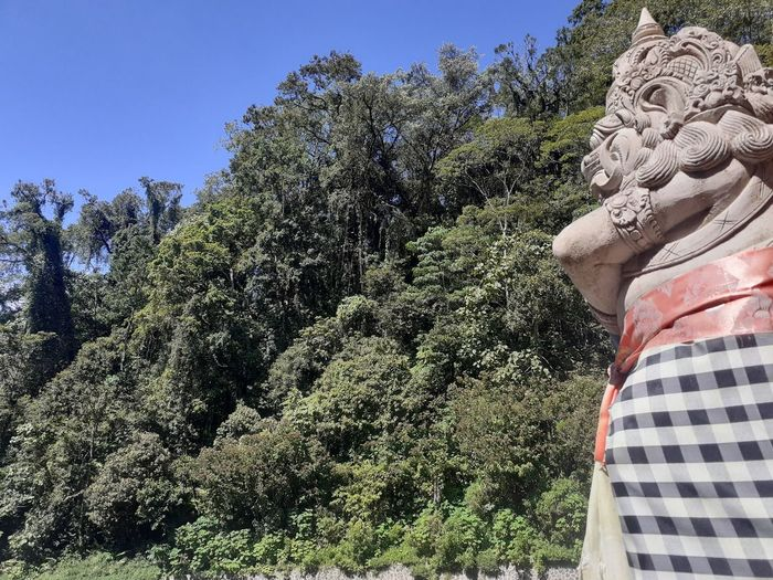 Low angle view of statue against trees and plants
