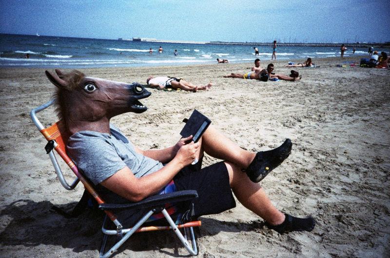 Man in horse head reading book on beach