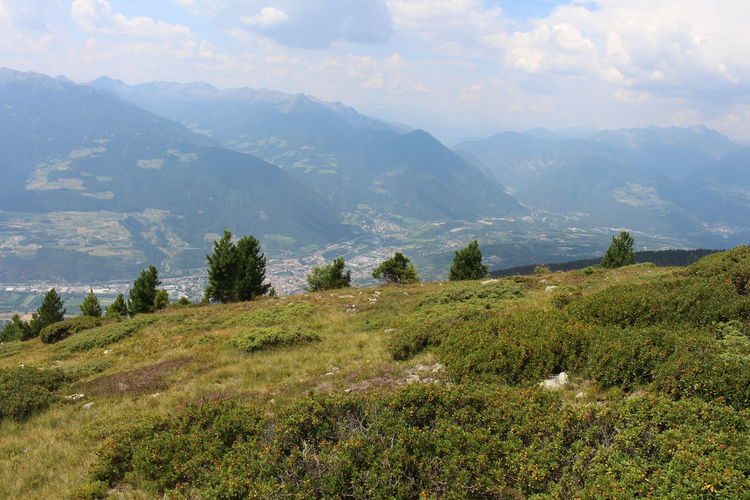 The panorama of Bressanone-Brixen from Plose. Green Color Tree Tranquility Non-urban Scene Sky Idyllic Outdoors Rolling Landscape Grass Mountain Range Tranquil Scene Scenics - Nature Landscape Plant Beauty In Nature Mountain My Best Photo
