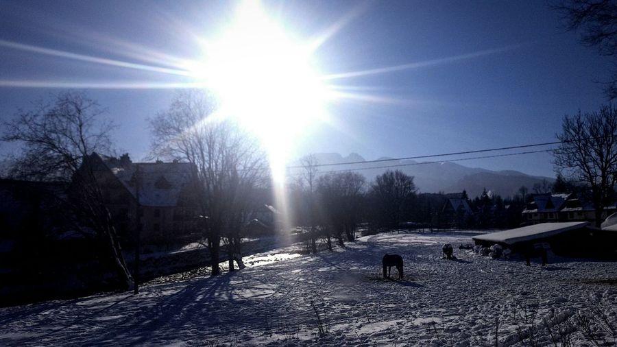Heart ❤ Taking Photos Snowland I Love ZAKOPANE