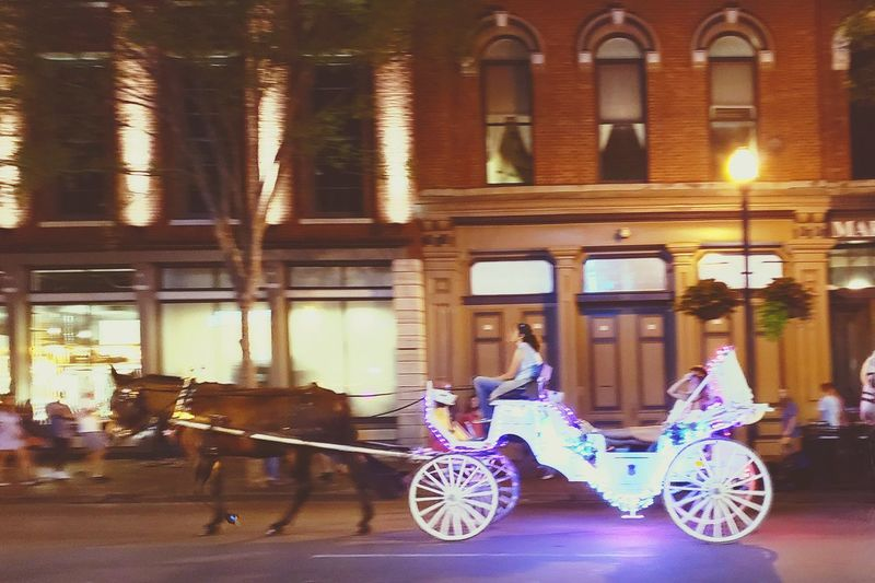 Downtown Nashville Horse And Carriage Nashville Horse Love Time Stands Still Land Vehicle Architecture Built Structure Historic EyeEmNewHere