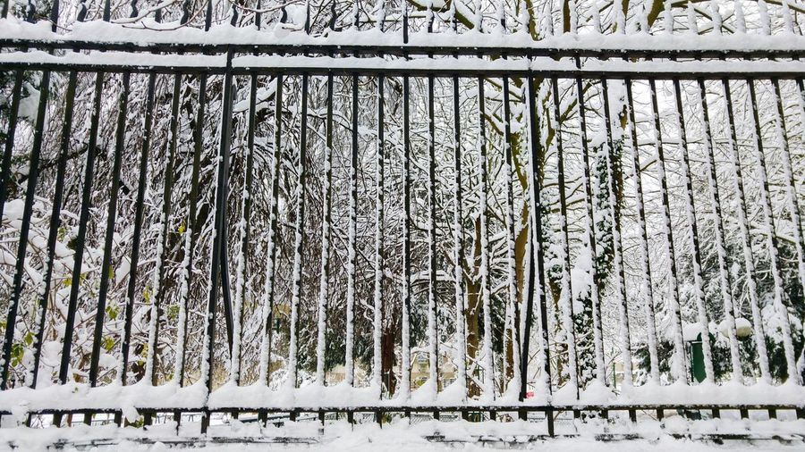 snow & patterns Winter Snow Gate Pattern Symmetry Day Backgrounds Outdoors Full Frame Built Structure No People Architecture Nature Close-up