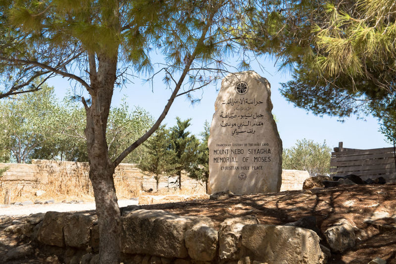 Mount Nebo Cultural Heritage Promised Land Monolith Religious Spot Jordan Trees Shadow Travel Photography