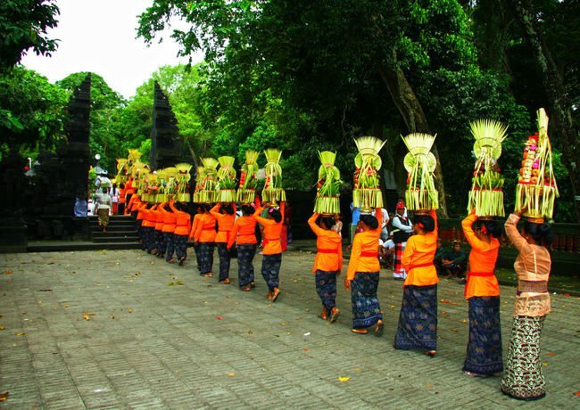Wonderful Bali Tree In A Row Clothing Celebration Outdoors Street Uniform Parade Orange Color Nature Ceremonyshoots Bali, Indonesia EyeEm Best Shots Bali Culture Tropical Paradise A New Perspective On Life