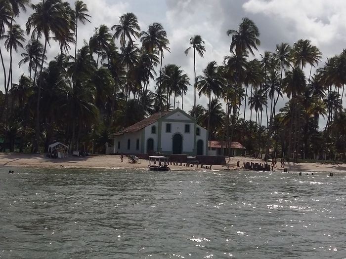 Cocopalms Coqueiros Showcase: February Smartphonephotography Pernambuco Igreja Church Igrejacatolica Praia Beach Voegol Nordeste  Brazil Brasil Mar Sea PraiadosCarneiros