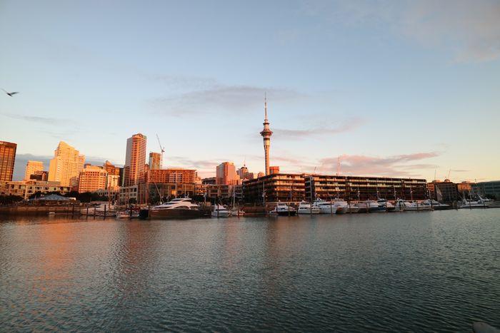 The Street Photographer - 2017 EyeEm Awards The Architect - 2017 EyeEm Awards New Zealand Auckland Cityscape Orange Golden Hour Sunset New Zealand Landscape Travel