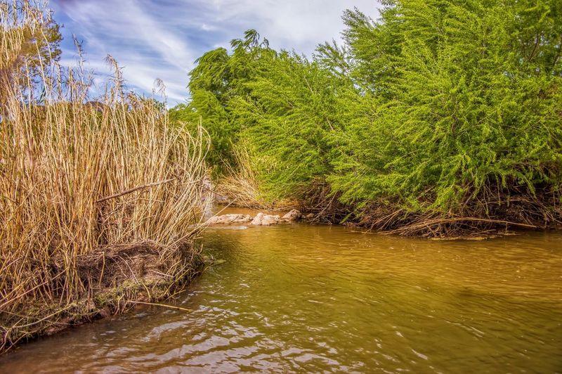 River Arizona