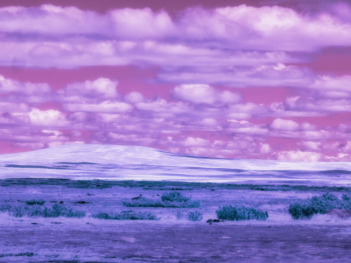 infrared photo in ultraviolet Pink Color Outdoors Sunset Land Purple Dramatic Sky Mountain Landscape Environment Nature No People Tranquility Sky Tranquil Scene Scenics - Nature Beauty In Nature Cloud - Sky Infrared Infrared Photography Ultraviolet