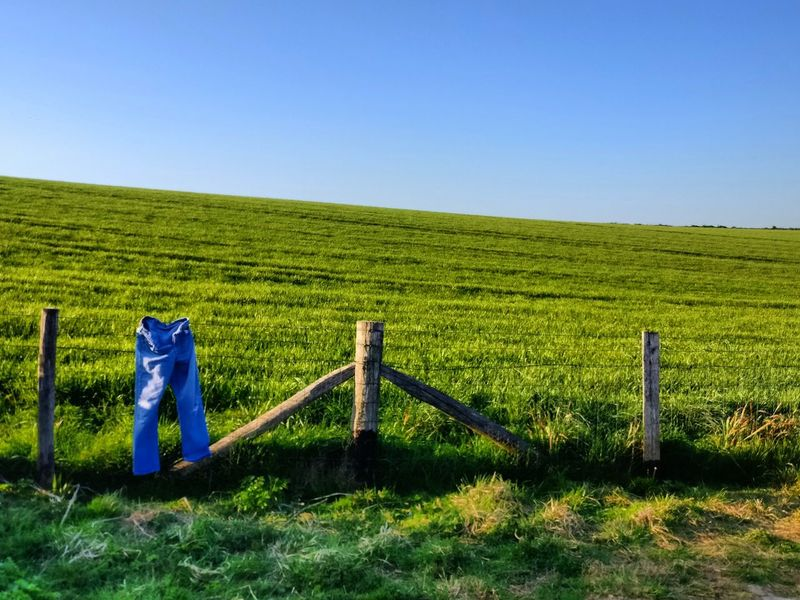 Beautiful day in Dover. Jeans Wallpaper Fence Field Dover White Cliffs Of Dover EyeEm Selects Agriculture Field Rural Scene No People Outdoors Growth Day Sky Nature