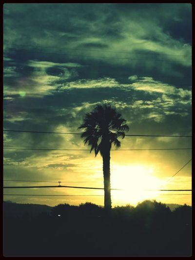 Santa Barbara, Ca.