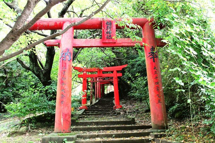 Japan Shinto Shinto Shrine Japanese Shrine Stairs Walkway Japanese  Japanese Culture Religion Religious Architecture Red Ultimate Japan