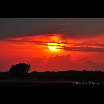 The light's of the Tuesday... Landscape Sunset Sunset_madness Sunsetporn Sunsetlovers Nikon Nikon_photography_ Mik Clouds Sunrise_sunsets_aroundworld HDR Tgif_sunset Rsa_photo_of_the_day Hungary Kalocsa Viewmysunset