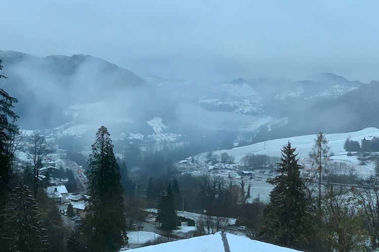 First day of snow! Winter Snow Cold Temperature Tree Environment Plant Scenics - Nature Pine Tree Mountain Range Pinaceae Non-urban Scene Tranquility Sky Landscape Mountain Beauty In Nature Tranquil Scene Nature Land Fog
