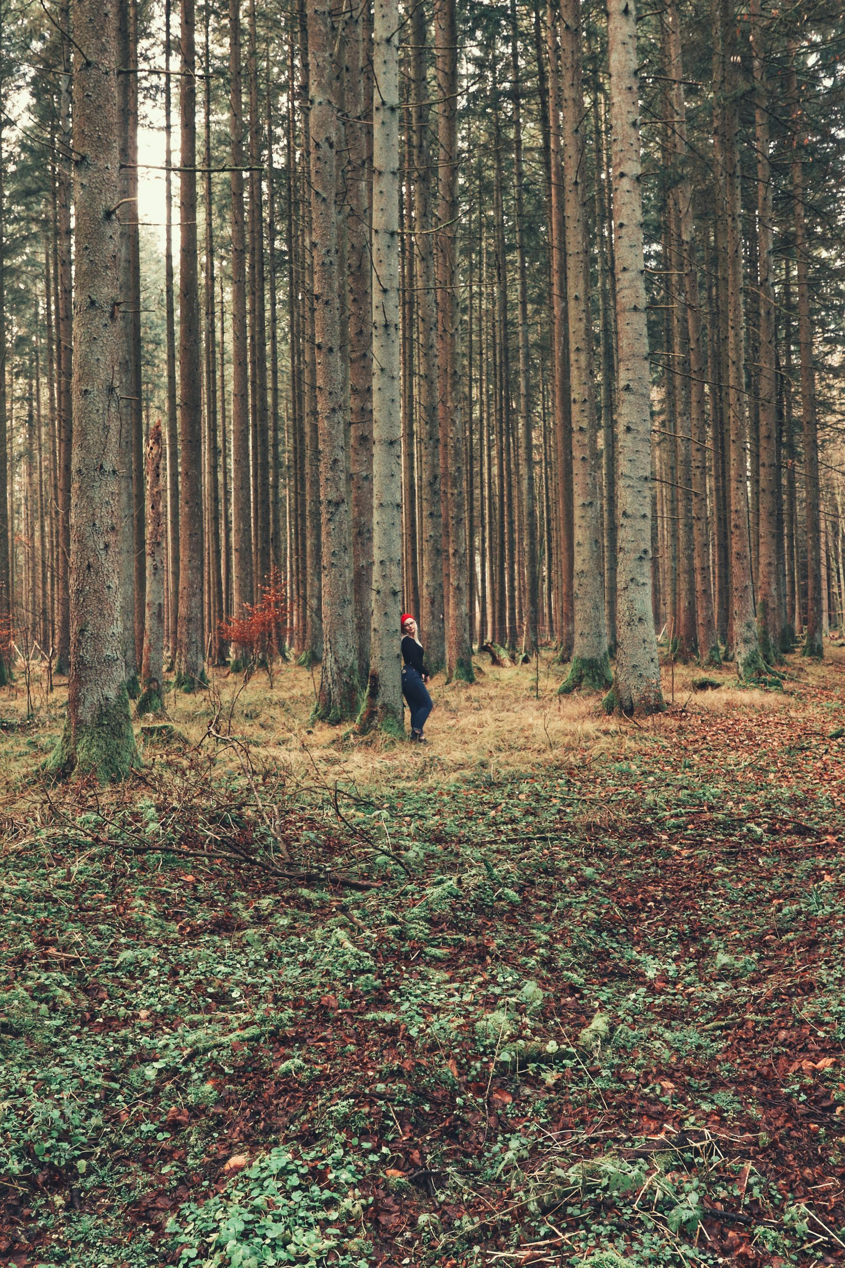 MAN STANDING AMIDST PLANTS IN FOREST